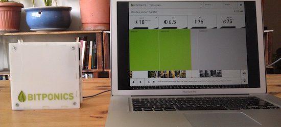 Startup Bitponics разрабатывает устройство для гидропонного садоводства