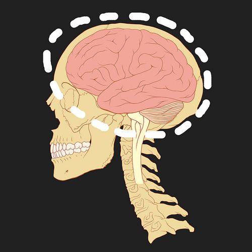 Исследователи исследуют химию мозга с помощью вольтамперометрии