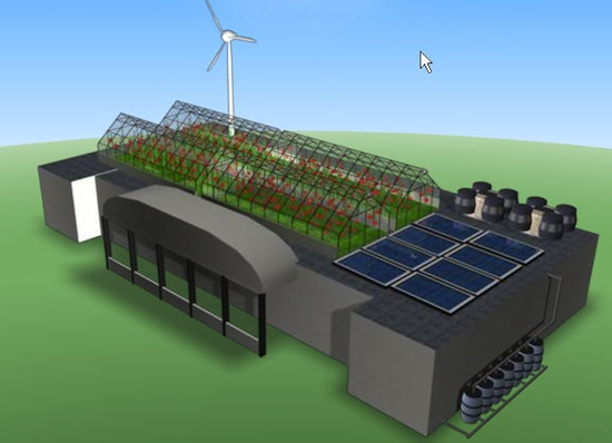 Овощи в небе: круглогодичное гидропонное производство на городских крышах