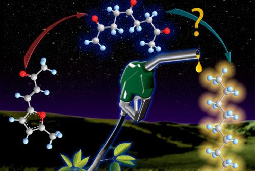Новый процесс конверсии биотоплива сокращает дорогостоящий шаг разделения