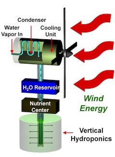 Чтобы создать гидропонные установки дешевле ученые стремятся превратить ветер в воду