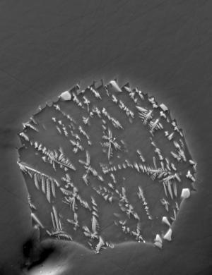 Обновление: анализ показывает что вода на Луне и Земле происходила из одних и тех же примитивных метеоритов
